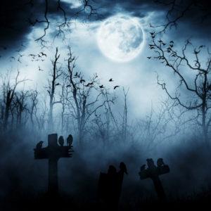 Halloween, Deko, Inspiration, Ideen, schwarz-weiss, black and white, gruselig