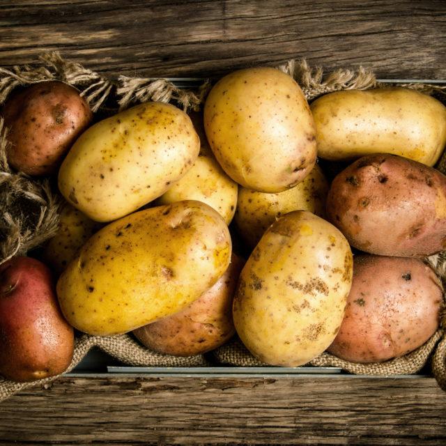 Äpfel, Aufbewahrung, avocado, Bananen, Fisch, Fleisch, Honig, Kartoffeln, Lagerung Lebensmittel, Lebensmittel, Lebensmittel richtig lagern – 10 Tipps damit dein Essen länger frisch bleibt, Öl, Südfrüchte
